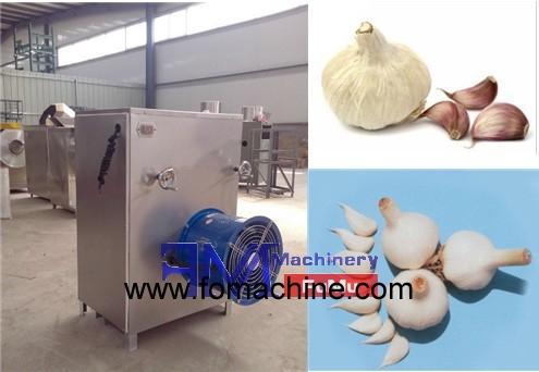 garlic peeling machine_12