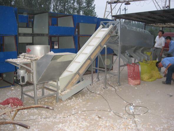 garlic sorter(5)