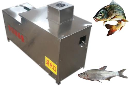 Fish Killing Machine