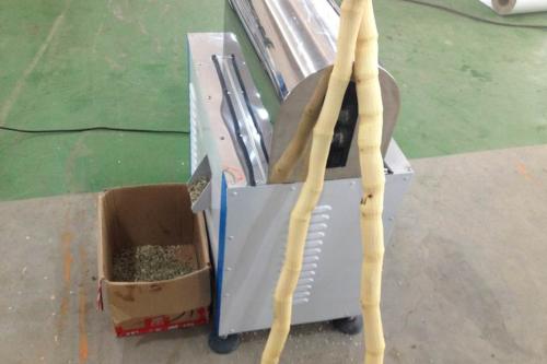 Sugarcane peeler