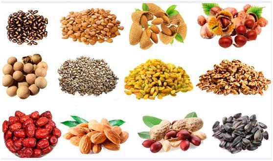 Vertical-Grains-Nuts-RoastingMachine2